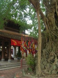 Vietnam_Nord___rue_du_Gast_320