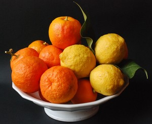 marmelade_d_oranges_am_res_001