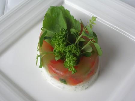 gel_e_concombre_mousse_saumon_sur_assiette