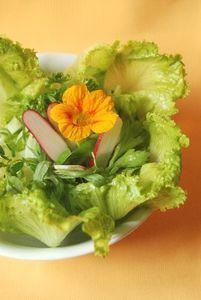 Salade_de_christophine_006