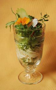 Salade_de_christophine_001
