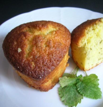 Cake_m_lisse_citron_005