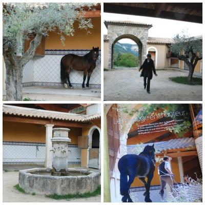 groupe cheval drôme