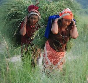 Népal avril 2012 686