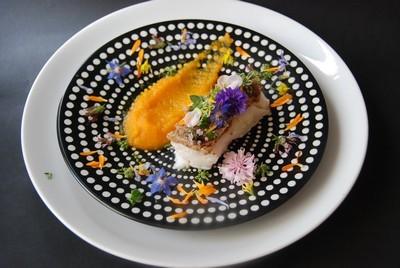 Bar en croûte de citron carottes abricots réduite 5