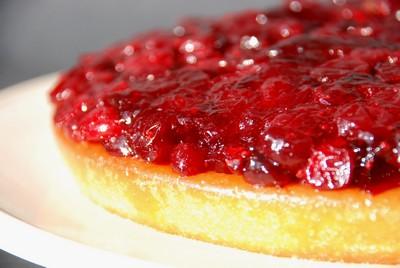 Voyageur compote cranberries (3)
