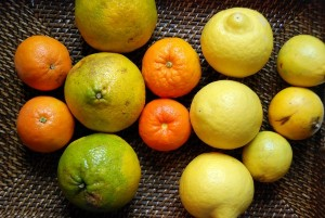 orange, ugli, orange amère, cédrat, bergamote
