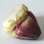 Légumes à la grecque, coquillages (1)