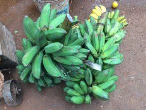 Cuba banane 2