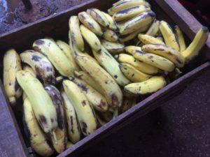 Cuba banane 3