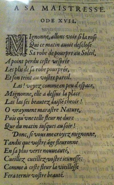 Lyon Au Nom De La Rose Recettes Anciennes Cuisine Plurielle